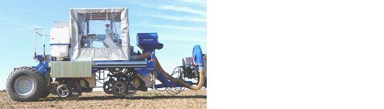 Entwicklung von Anbauverfahren zur Mulch- und Direktsaat von Körnerleguminosen im ökologischen Landbau